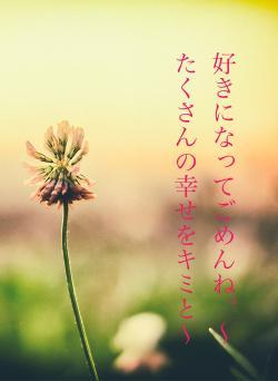 好きになってごめんね。〜たくさんの幸せをキミと〜