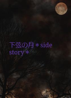 下弦の月*side story*