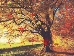 【短】そして、冬がやって来る。