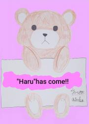 """Haru""has come!!"