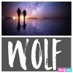 WOLF-孤独のその先-