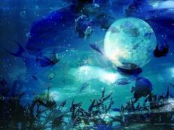 月夜見の王女と偽りの騎士